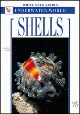 Shells: White Star Guides - Underwater World