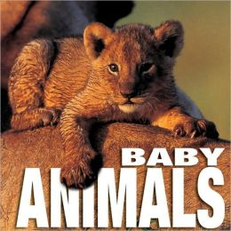 Baby Animals: Supercube