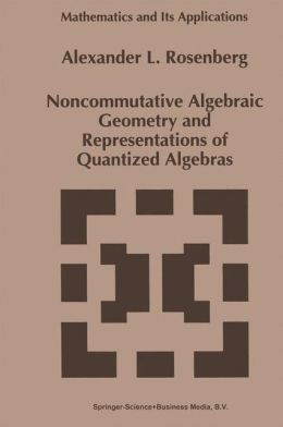 Noncommutative Algebraic Geometry and Representations of Quantized Algebras