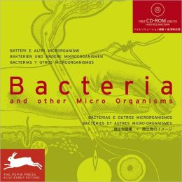 Bacteria & Other Micro Organisms
