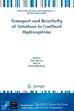 Transport and Reactivity of Solutions in Confined Hydrosystems
