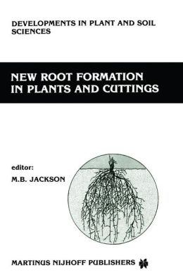 New Root Formation in Plants and Cuttings