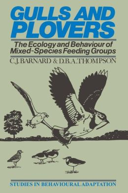 Gulls and Plovers: The Ecology and Behaviour of Mixed-Species Feeding Groups