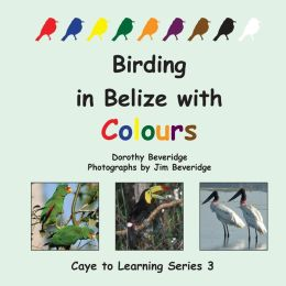 Birding in Belize with Colours