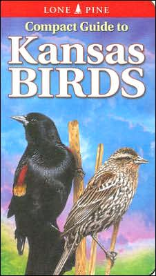Compact Guide to Kansas Birds